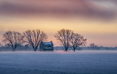 Colderrrr Thannnn.......Screwww tttthis ddumbshhhit (AnthonyVanSchoor) Tags: anthonyvanschoor maryland usa easternshoremaryland dorchestercounty agricultural farmland foggy fog sunrise winter landscape