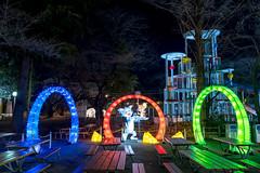 TOSHIMAEN WINTER FANTASIA 2018-2019 (@miya_1102) Tags: toshimaenwinterfantasia toshimaen としまえん 豊島園 としまえんウィンターファンタジア イルミネーション