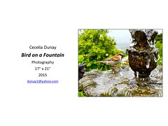 """Bird on a Fountain • <a style=""""font-size:0.8em;"""" href=""""https://www.flickr.com/photos/124378531@N04/47052358442/"""" target=""""_blank"""">View on Flickr</a>"""