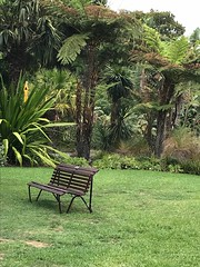 Peaceful surroundings (Claudia M15) Tags: thi sit rest garden peaceful parkbench park bench