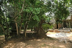 Angkor_Ta_Som_2014_37