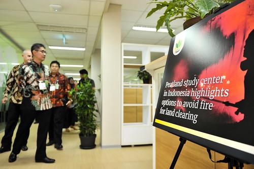 ITPC interim office