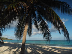 Caribbean Sand Beach Playa Esmeralda Cuba Oriente Guardalavaca © Karibik Sandstrand Strand Ost-Kuba Große Antillen © (hn.) Tags: cu cub caribbean caribbeanbeach groseantillen guardalavaca hotelsolriodelunaymares karibik karibikstrand kokosnusspalme kokospalme lunaymares playaesmeralda provinciadeholguín republicadecuba republik sandstrand solriodelunaymares atlanticocean atlantik beach coconutpalm coconutpalmtree coconuttree cocotier copyright copyrighted cuba heiconeumeyer karibisch kuba meer ocean ozean palmtree palme playa sand sandbeach sandybeach sea strand tp201901cuba tropical tropicalbeach tropisch