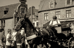 Bruges (mammut2005) Tags: belgium bruges brugge street horsevehicle horses streets transportation urbanspaces