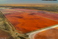 _FOU7597.jpg (Murray Foubister) Tags: africa gadventures spring namibia2007 aerial desert travel 2018
