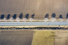 Looking for colors (icemanphotos) Tags: aerial drone view agriculture field light calm