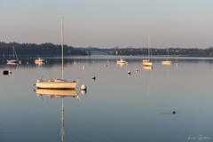 Sweet evening on the edge of the Rance river (liloubreizh) Tags: evening coucher soleil sunset sun brittany rance france bretagne nikond7200 55300mm landscape