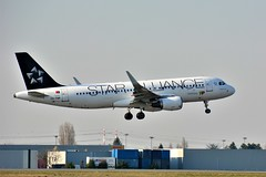 """(ORY) TAP  Airbus A320  CS-TNP """"Star Alliance livery""""Landing runway 06 (dadie92) Tags: orly airbus a320 tap portugal cstnp staralliance spéciallivery spotting landing aircraft airplane nikon d7100 tamron sigma danieldanel"""