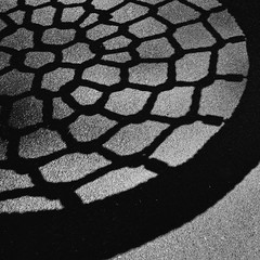 58:365:2019 (@mich.robinson) Tags: michellerobinson adelaide southaustralia australia photography photographer visualartist project365 bw blackwhitephotography squareformat 11 abstract shadows shadowplay