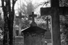 Inclinations (Alexander Dülks) Tags: burialground kreuz friedhof monochrom incline 1990 cemetery sw grabstein inclination monochrome graveyard neigung gravestone cross alterfriedhof analog bw bonn germany