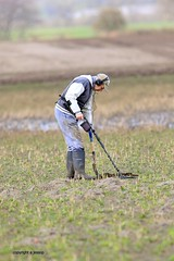 J78A0232 (M0JRA) Tags: robins birds humber ponds lakes people trees fields walks farms traylers