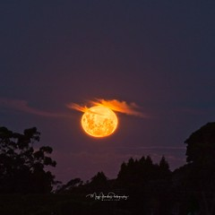 Supermoon 21 March 2019... (muzzpix-nz) Tags: canonm5 moon moonrise supermoon