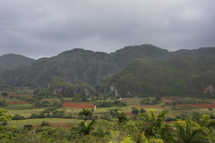 "Landscape near the town of Vinales in the Pinar del Río Province of Cuba, 03-29-2019 048 (Richard Hurd) Tags: vinales cuba tobacco mountains landscape guaniguanico ã""rganos mogotes valley valle coffee pinardelrio órganos"
