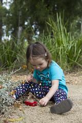 filling her bus with rocks (louisa_catlover) Tags: portrait child family toddler daughter tabby tabitha outdoor garden park nature karwarra dandenongs