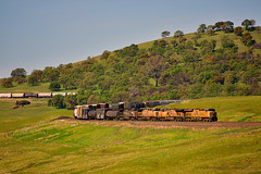 UnionPacificRailroad_02 (DonBantumPhotography.com) Tags: landscapes train unionpacificrailroad tablemountain hills grasslands donbantumcom donbantumphotographycom