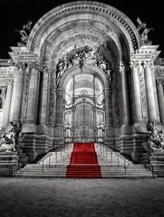 Le petit Palais -Paris- (Aziz Peps) Tags: parisian paris parisien france palais palace architecture blackwhite blackandwhite monochromatic chateau parisbynight redcarpet nikon nikkor trave trip