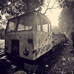 Dans le sous bois du lac Malta à Poznan. (lescamionsdeurope) Tags: pologne poz bois sousbois ville city street rue malta rail epave wagon