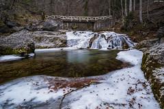 Puente de Arripas (sostingut) Tags: río agua hielo nikon tamron haida bosque pirineos puente montaña invierno soledad roca valle árbol hojas