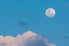 Superluna llena (Augusto Silva Otero) Tags: cali colombia luna naturaleza paisaje valledelcauca co