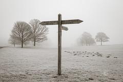 _IMG1826 Wentworth Park (Pete.L .Hawkins Photography) Tags: misty walk hoober wentworth near rotherham petehawkins petelhawkinsphotography petelhawkins petehawkinsphotography pentax hd pentaxd fa 2470mm f28 ed sdm wr