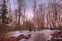 Blaue Stunde heute in rosa (wolf238) Tags: ende tageslauf abend blauestunde