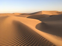 Tribute to Frank Herbert (Svedek) Tags: spain canary island grancanaria sand dune nature landscape maspalomas horizon