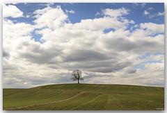 bavarian landscape iii (lichtauf35) Tags: sameplace bavaria landscape weissblau springtime simple lightroom acdsee 24l 50d naturallight 2000views lichtauf35