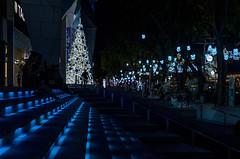 Merry Christmas (VadiveluTT) Tags: festival lights christmas xmas singapore orchidroad