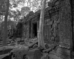 1107 (The Dent.) Tags: cambodia siem reap mamiya 7ii acros hc110 5 mins dilution b