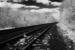 Rails (graemes83) Tags: full spectrum infrared ir black white monochrome