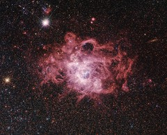 Grand Stellar Nursery NGC 604 (geckzilla) Tags: stellarnursery ngc604 m33 triangulum nebula starformation ionized gas dust halpha hubble hst visible nearinfrared nearultraviolet