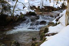 the brook in winter (Hugo von Schreck) Tags: hugovonschreck allerheiligen badenwürttemberg deutschland canoneos5dsr tamron28300mmf3563divcpzda010 blackforest