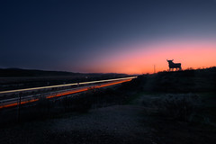 El Toro de Osborne (enrique.torrens) Tags: spain bull landscape sunset lightpainting extremadura atardecer toro de osborne road carretera dusk ocaso