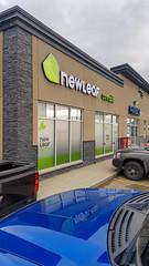 Newleaf Cannabis Shop (Bracus Triticum) Tags: newleaf cannabis shop red deer レッドディア アルバータ州 alberta canada カナダ 10月 十月 神無月 かんなづき kannazuki themonthwhentherearenogods 平成30年 2018 autumn october