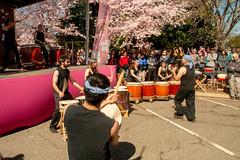 CherryBlossomDC2019-811.jpg (carlton.colter) Tags: cherryblossomdc taiko taikotakeover markhtaikoensemble sakurataikofest washington dc usa