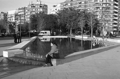 190104_Parc_Central_026 (Stefano Sbaccanti) Tags: bw blackandwhite bn parccentral valencia minox35gl kentmere400 bellinihydrofen analogicait analogue analogico argentique spain spagna selfdeveloped 2019 city