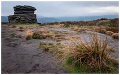 Mother Cap, Over Owler Tor, Peak District (S.R.Murphy) Tags: december2018 derbyshire landscape overowlertor peakdistrict surpriseview fujifilmxt2 oilpaintfilter photoshop digitalart photoart fujifilmxf1024mm mothercap grass rock geology england unitedkingdom
