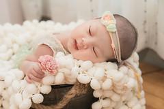 AN1_4622 w logo (anitana) Tags: anitana 女攝影師 阿妮塔 台中 新生兒寫真 寶寶寫真 親子寫真 全家福 推薦 newborn baby family kids photography taichung 新生兒 到府拍攝