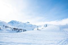 Simplonpass_26. Januar 2018-2 (silvio.burgener) Tags: simplonpass simplon switzerland adler schweiz swiss svizzera suisse hospiz sempione steinadler