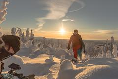 making off snowshoe walking (VisitLakeland) Tags: finland kuopiotahko lakeland tahko tahkosafarit aurinkoinen aurinkosun forest lumi luonto luontokohde maisema metsä nature outdoor retkeily scenery snow snowshoe sunny talvi tykky tykkylumi winter