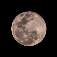 Full Moon (ruifo) Tags: nikon d850 nikkor afs 200500mm f56e ed vr full waxing gibbous moon illumination mexico city df cdmx ciudad méxico luna lua noite noche night sky cielo ceu céu astro astrophotography astrofotografia astrofotografía earth terra tierra llena cheia 996 nature natureza naturaleza