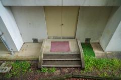 Junior high school gymnasium. (Yasuyuki Oomagari) Tags: gymnasium school exit pink green architecture light nikon d850 zeiss distagont2821 japan kyushu fukuoka 日本 九州 福岡県