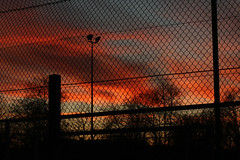 Freedom Is Another Word (gripspix (Easter Break 4 Family)) Tags: 20190216 schwenningermoos swamp sumpflandschaft moor afterglow abendrot zaun fence flutlicht lamp wired drähte