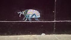 Pol Cosmo / Breydelstraat -  apr 2019 (Ferdinand 'Ferre' Feys) Tags: gent ghent gand belgium belgique belgië streetart artdelarue graffitiart graffiti graff urbanart urbanarte arteurbano ferdinandfeys polcosmo