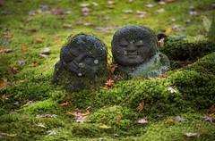 Couple at Sanzenin, Ohara (DanÅke Carlsson) Tags: japan japanese sanzenin ohara kyoto moss garden stone statues couple green autumn buddhism temple