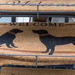Beige Fußabtreter für Haustüre mit schwarzen Hunden und der Aufschrift Welcome thumbnail