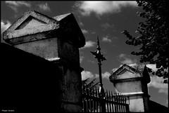 Saint Corneille (Sarthe) (gondardphilippe) Tags: saintcorneille sarthe maine paysdelaloire noiretblanc noir nb blanc blackandwhite bw black white mur wall cimetière cimetery architecture arbre campagne extérieur graphique monochrome outdoor ombre porte quiet rural texture ruralité vieux zen
