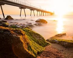 Una nou dia, una nova oportunitat. (Ramon InMar) Tags: barcelona beach platja sol sunrise sand rocks