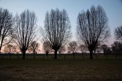 Flickr 2018 3 (Nice Day) Tags: abendstimmung baerl deutschland nrw natur niederrhein ort rhein tageszeit duisburg nordrheinwestfalen de