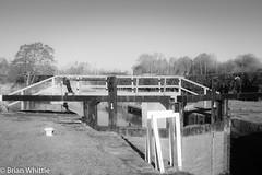 IMGP9347 (Brian H Whittle) Tags: blackwhite leedsliverpoolcanal rufford canal